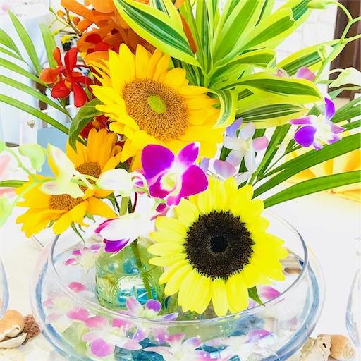 f:id:asunaro-flower:20200617011339j:image