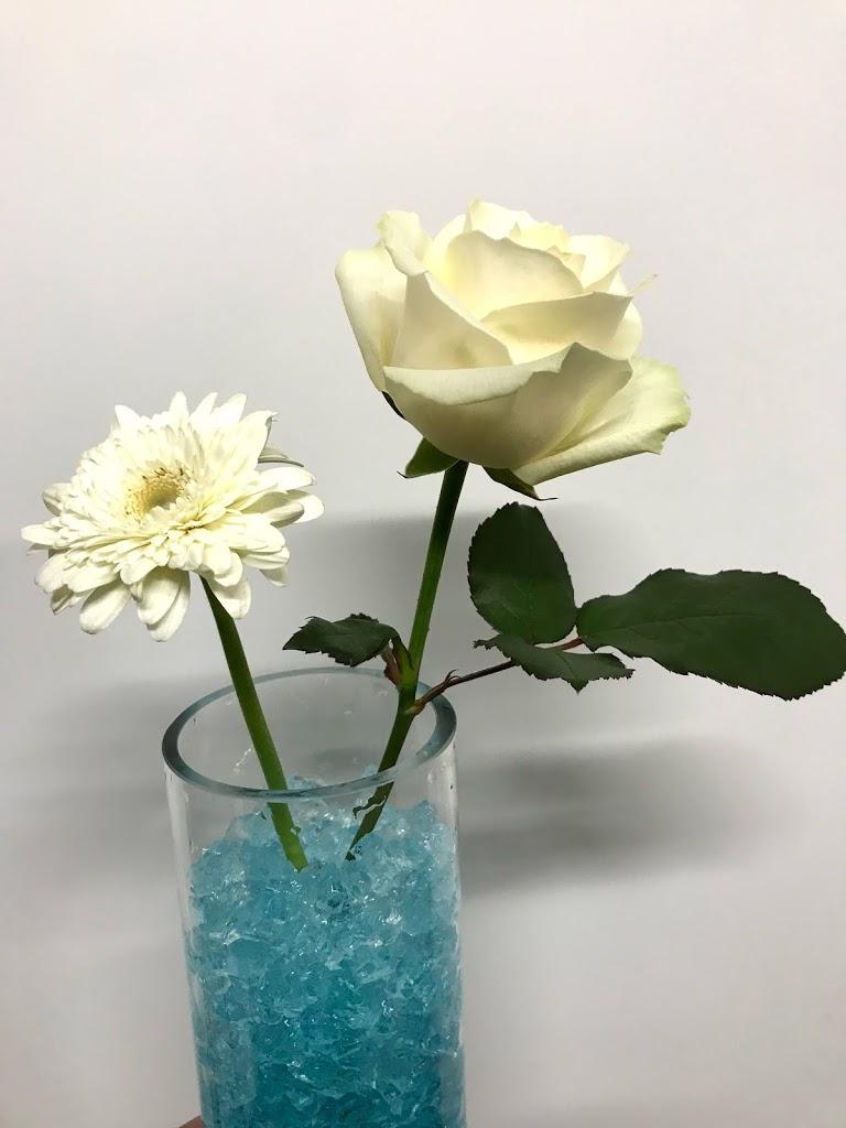 f:id:asunaro-flower:20200623010035j:plain