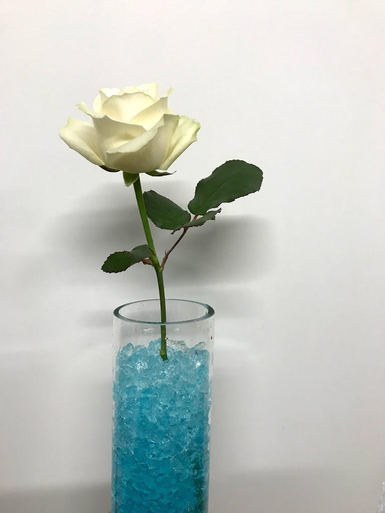 f:id:asunaro-flower:20200623010135j:plain