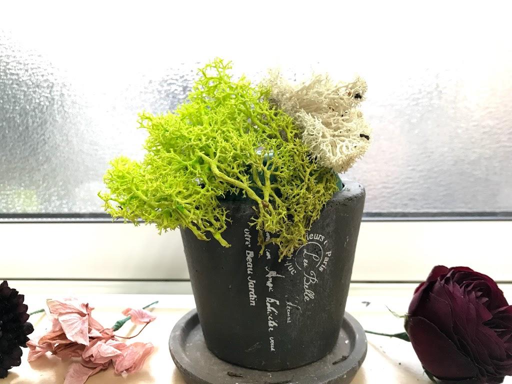 f:id:asunaro-flower:20200623011948j:plain