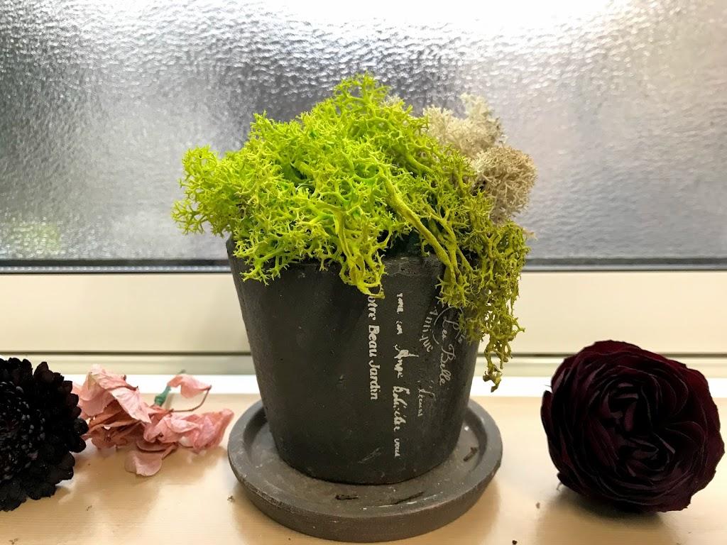 f:id:asunaro-flower:20200623012019j:plain