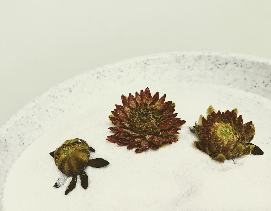 f:id:asunaro-flower:20200623012628j:plain