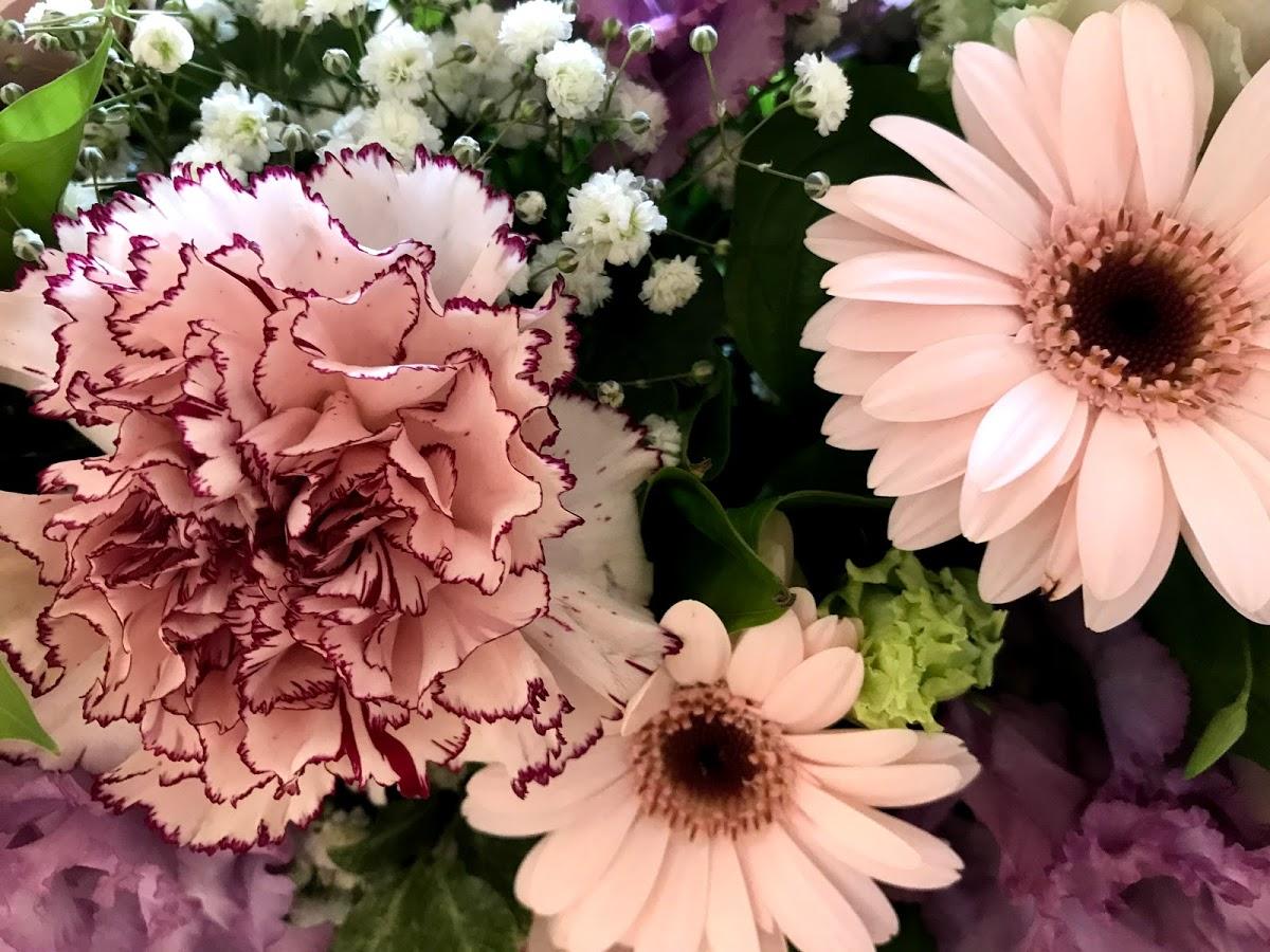 f:id:asunaro-flower:20200623013821j:plain
