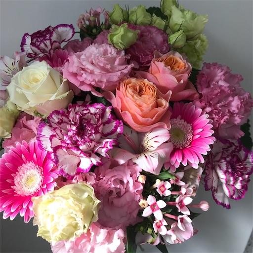 f:id:asunaro-flower:20200628130458j:image