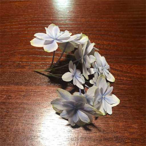 f:id:asunaro-flower:20200704151832j:image