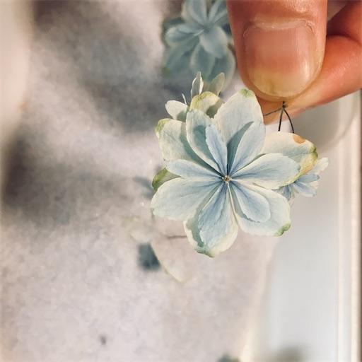 f:id:asunaro-flower:20200704190040j:image