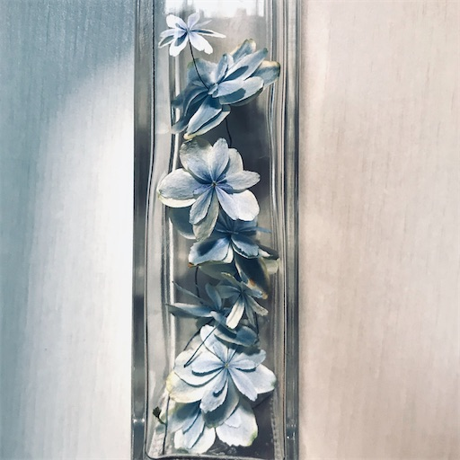 f:id:asunaro-flower:20200704190619j:image