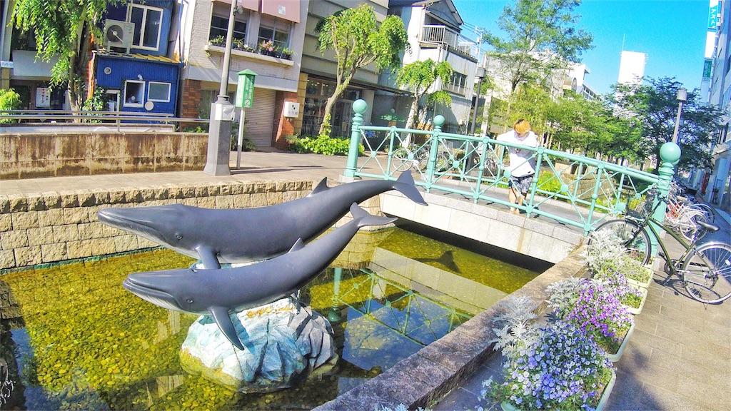 f:id:at-chihiro:20170523204838j:image