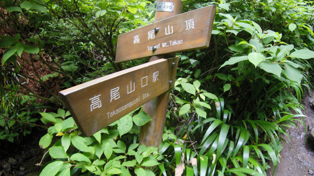 f:id:at-chihiro:20170614221116j:plain