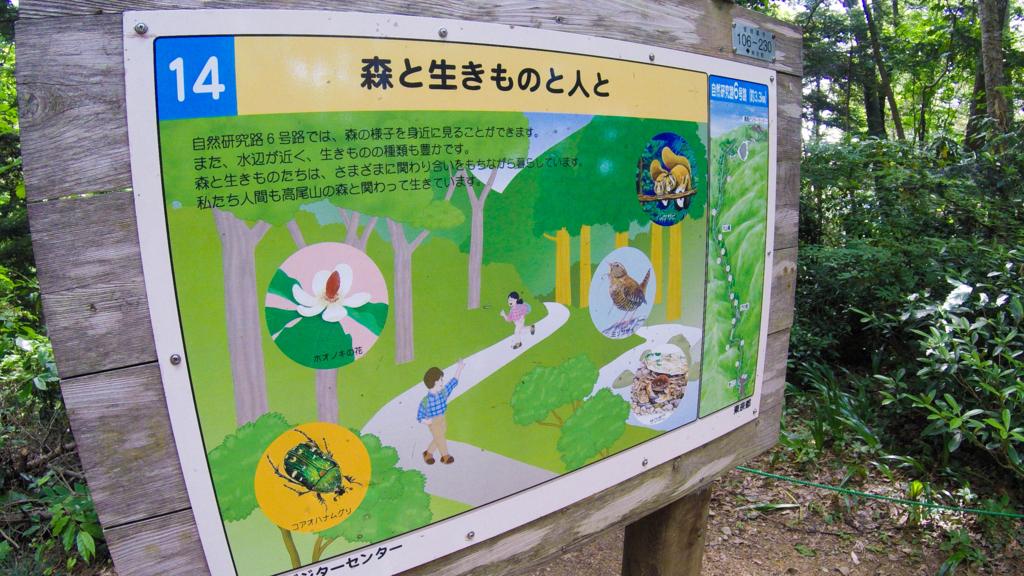 f:id:at-chihiro:20170614221153j:plain