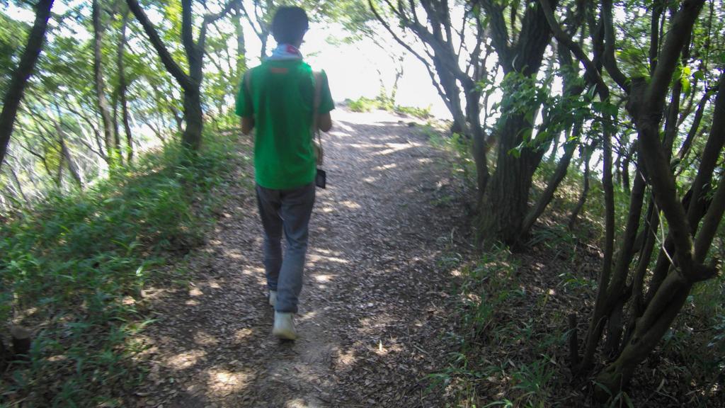 f:id:at-chihiro:20170727013322j:plain