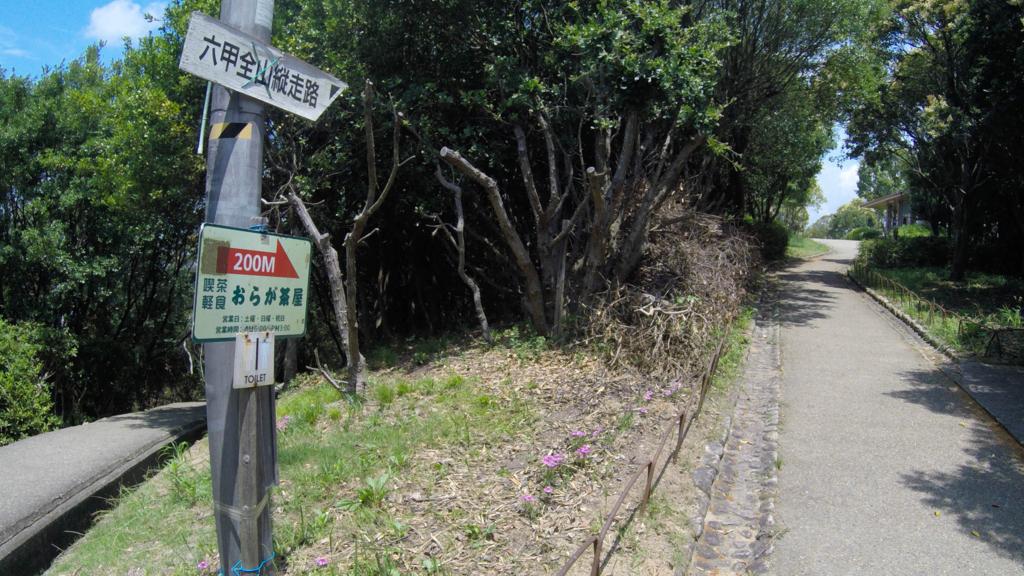 f:id:at-chihiro:20170727013417j:plain