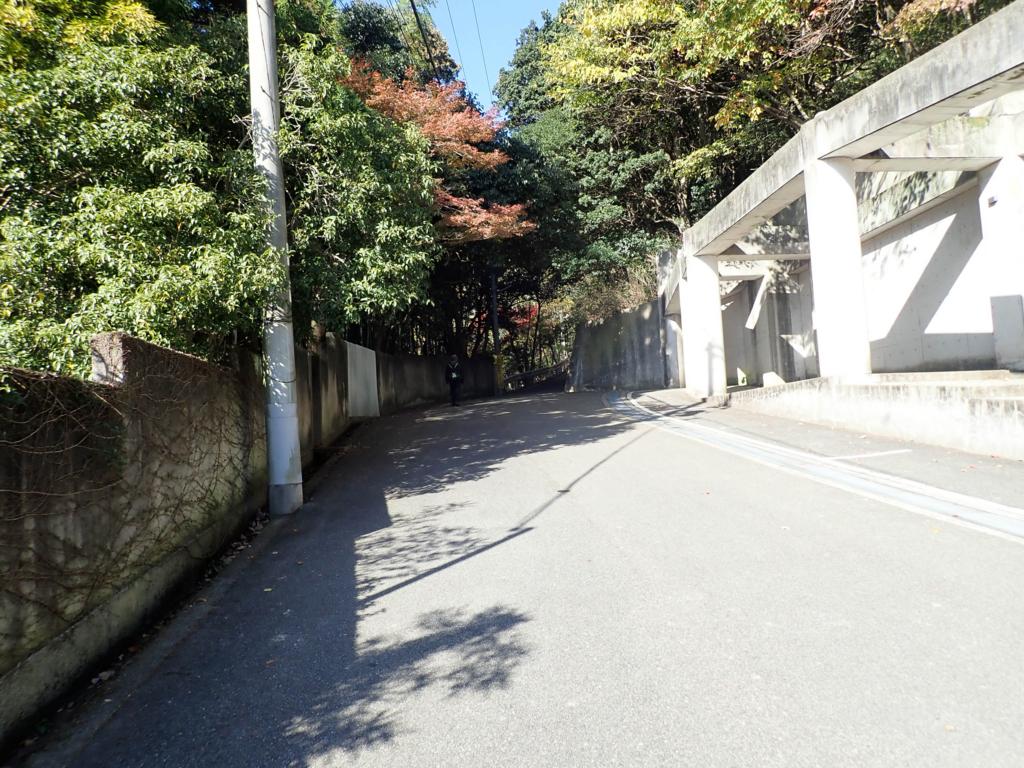 f:id:at-chihiro:20171125075830j:plain