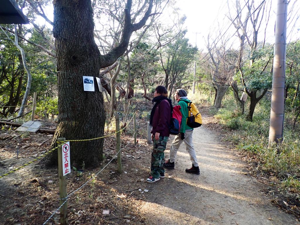 f:id:at-chihiro:20180114192654j:plain