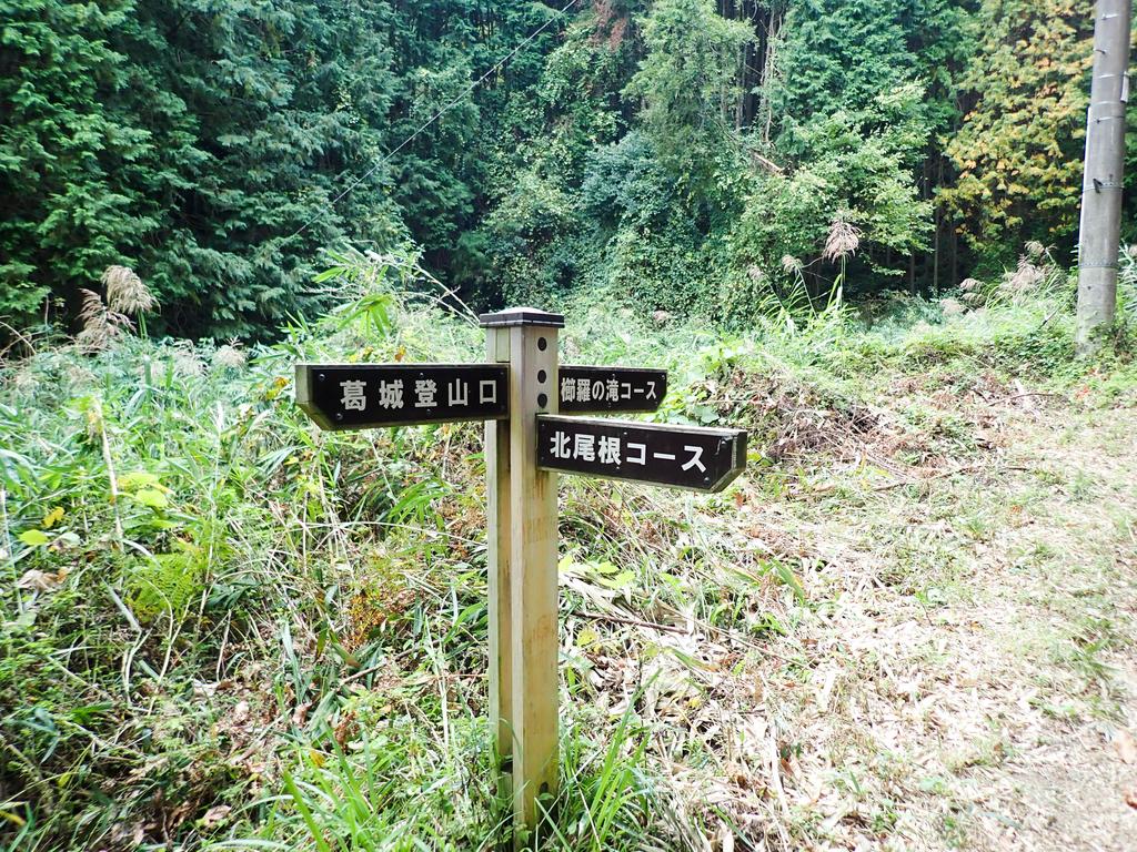 f:id:at-chihiro:20181104142149j:plain