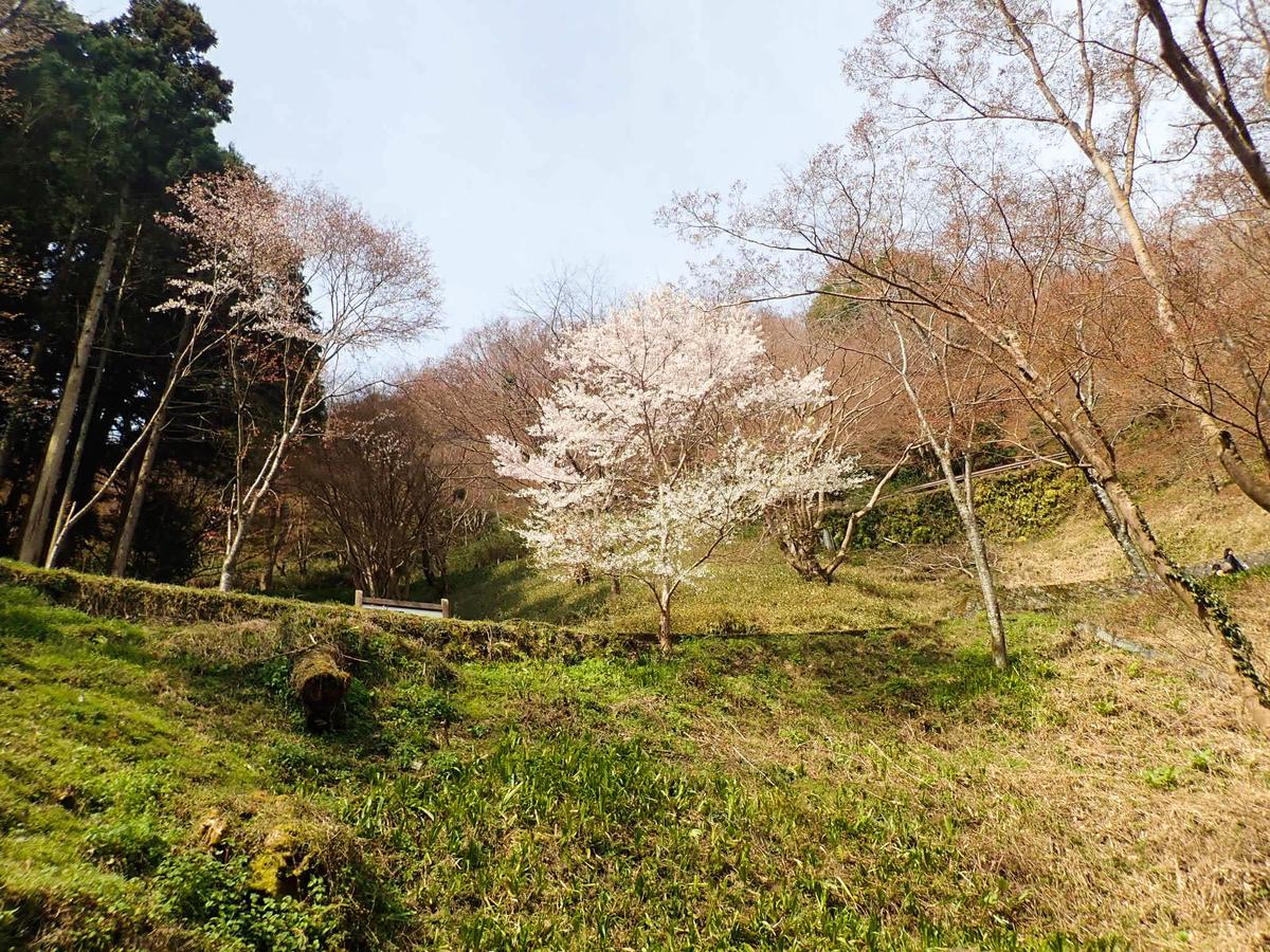 f:id:at-chihiro:20190407093235j:plain