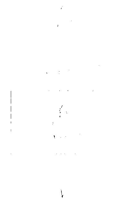 20141119235836