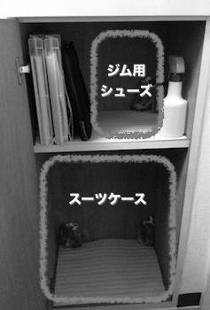 f:id:atamadekkachi:20170703170839j:plain