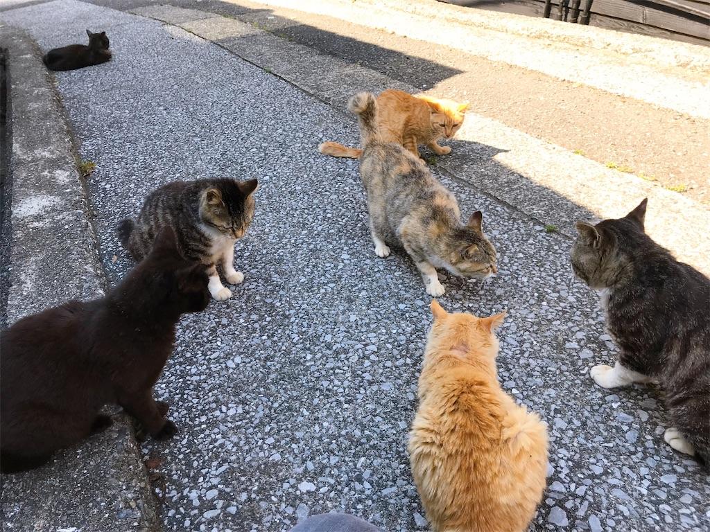 f:id:atamagaokashikunatta:20200429233419j:image