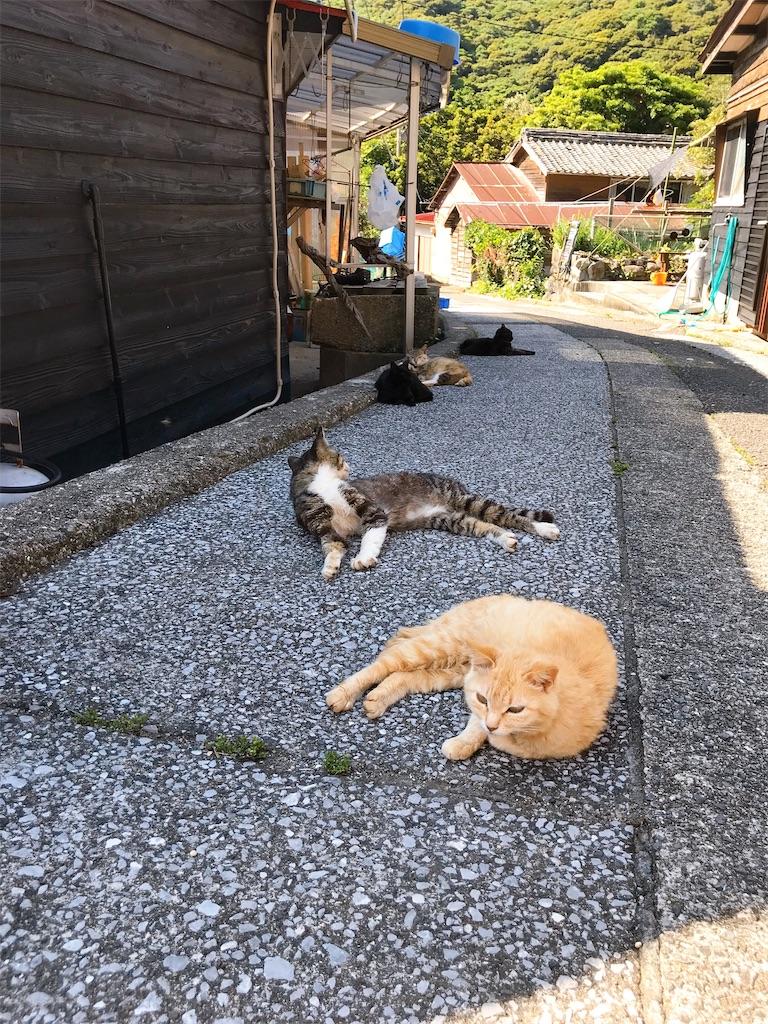 f:id:atamagaokashikunatta:20200429233429j:image