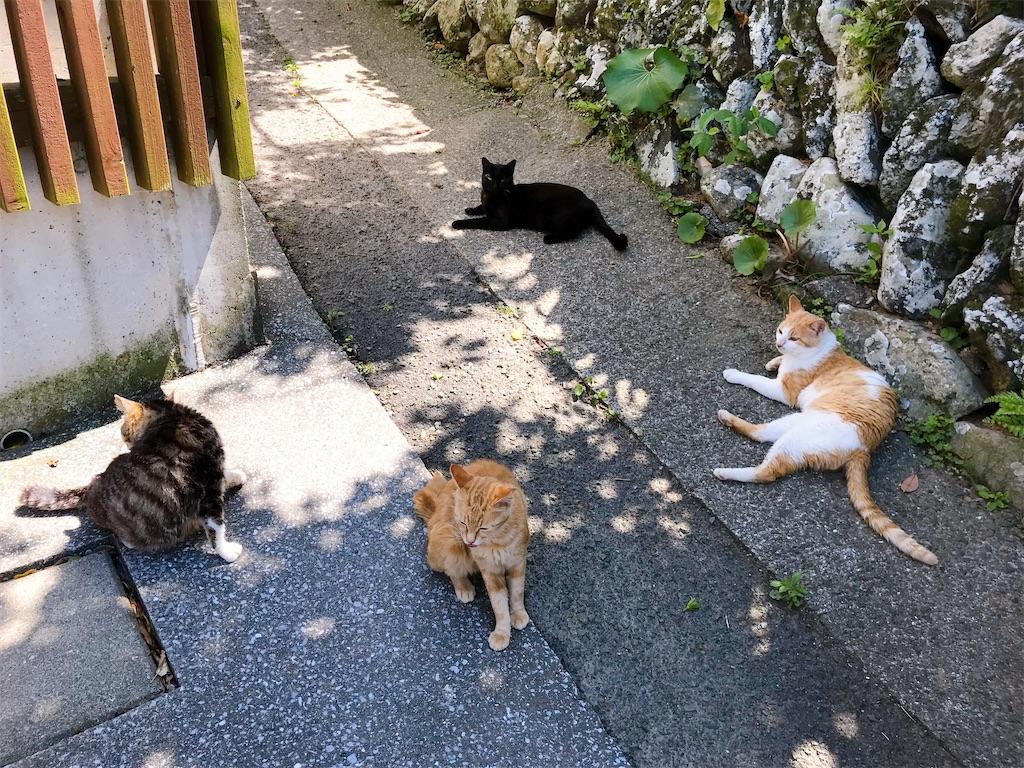 f:id:atamagaokashikunatta:20200429235323j:image