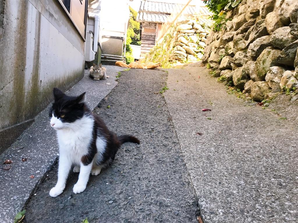 f:id:atamagaokashikunatta:20200430000049j:image