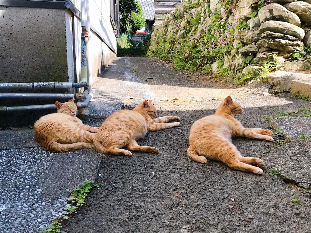 f:id:atamagaokashikunatta:20200430000102j:image