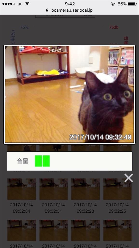 f:id:atamagaokashikunatta:20200619213013j:image