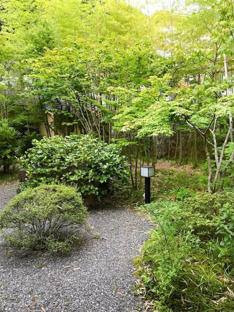 f:id:atamagaokashikunatta:20200703211111j:image