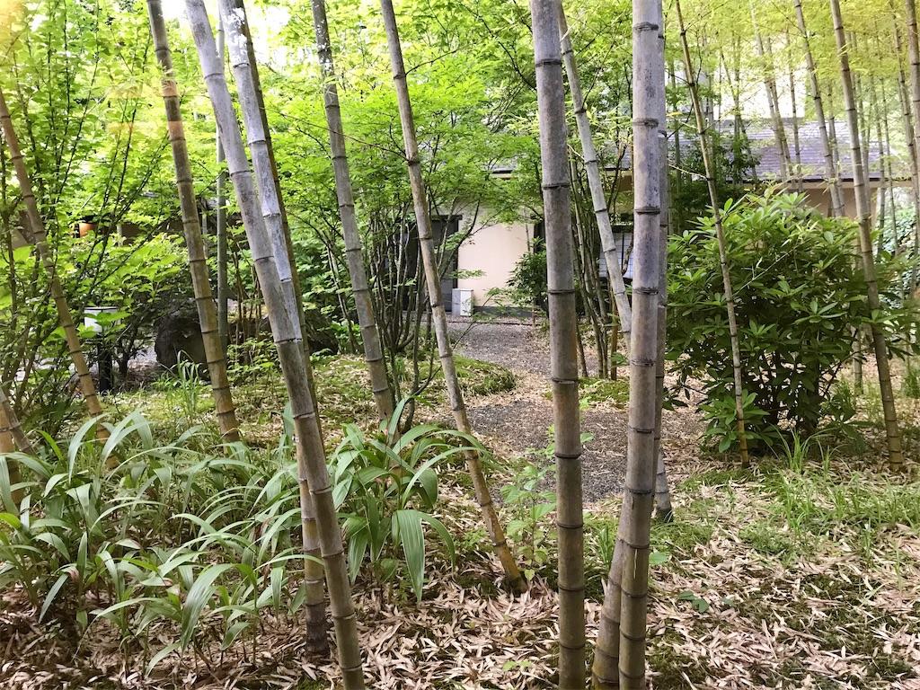 f:id:atamagaokashikunatta:20200703211128j:image