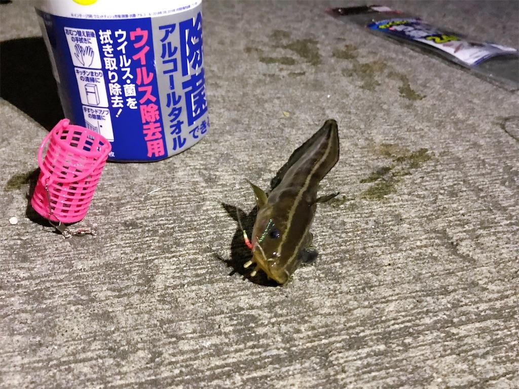f:id:atamagaokashikunatta:20201026203801j:image