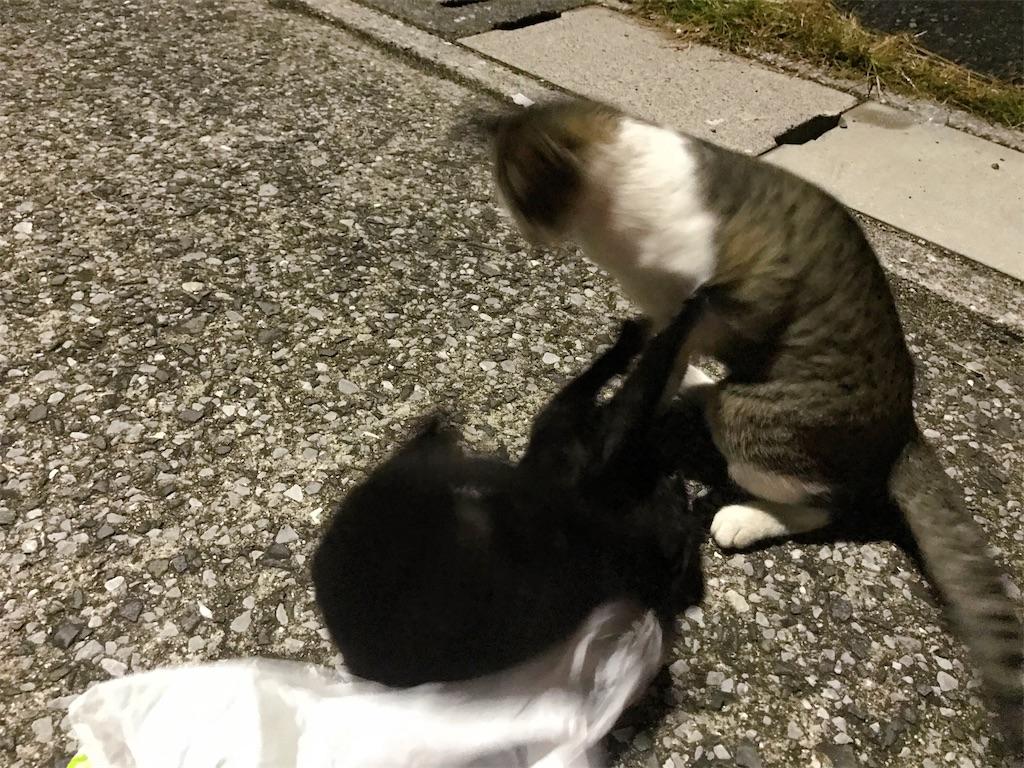 f:id:atamagaokashikunatta:20201107234055j:image