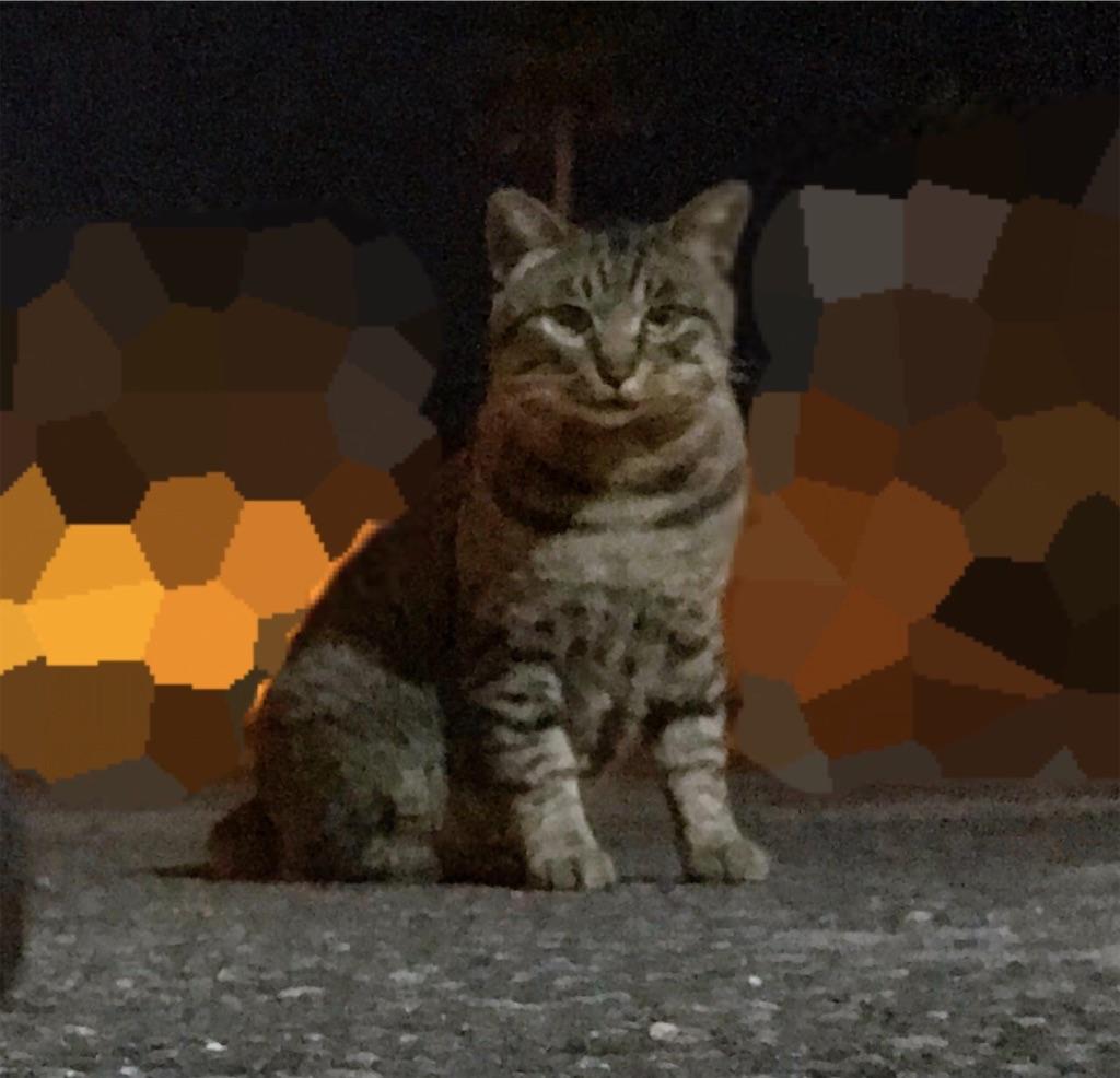 f:id:atamagaokashikunatta:20201107235848j:image