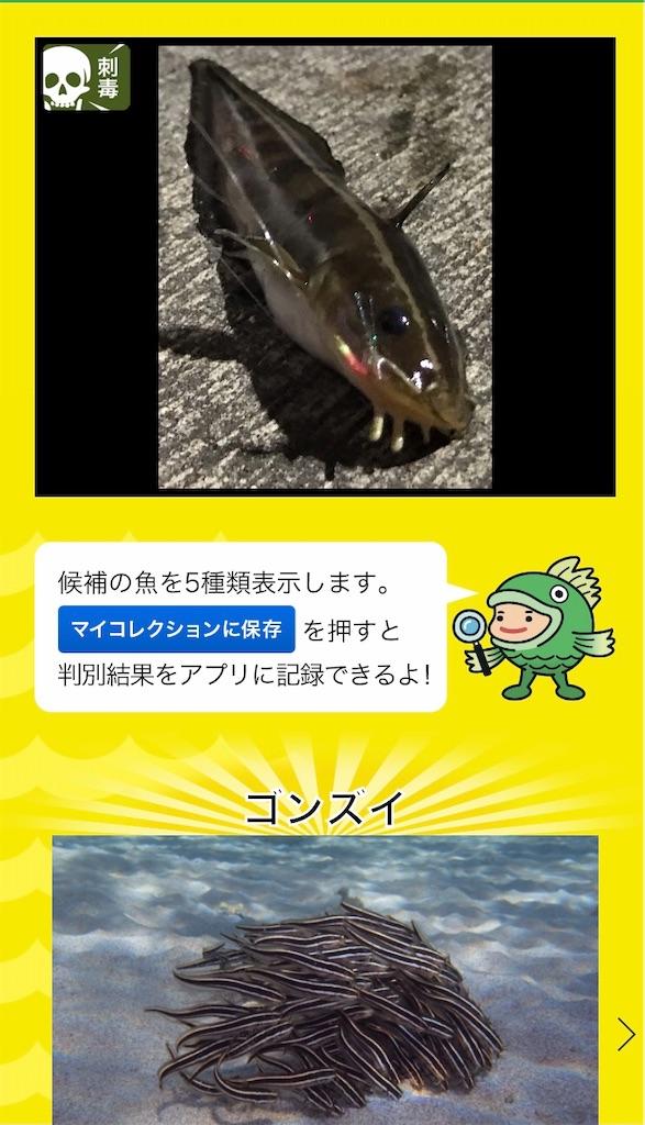 f:id:atamagaokashikunatta:20201112204722j:image