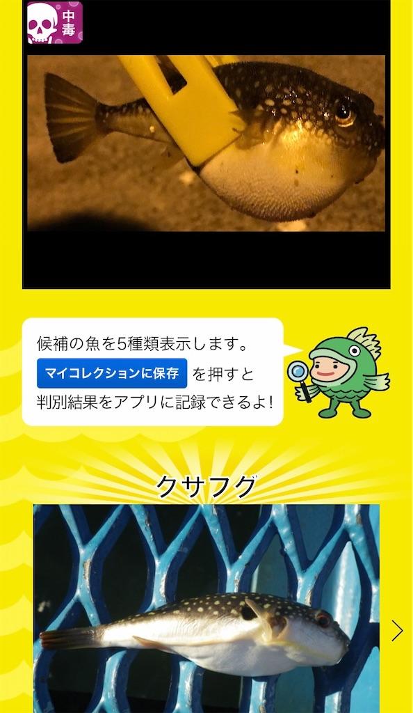 f:id:atamagaokashikunatta:20201112215310j:image