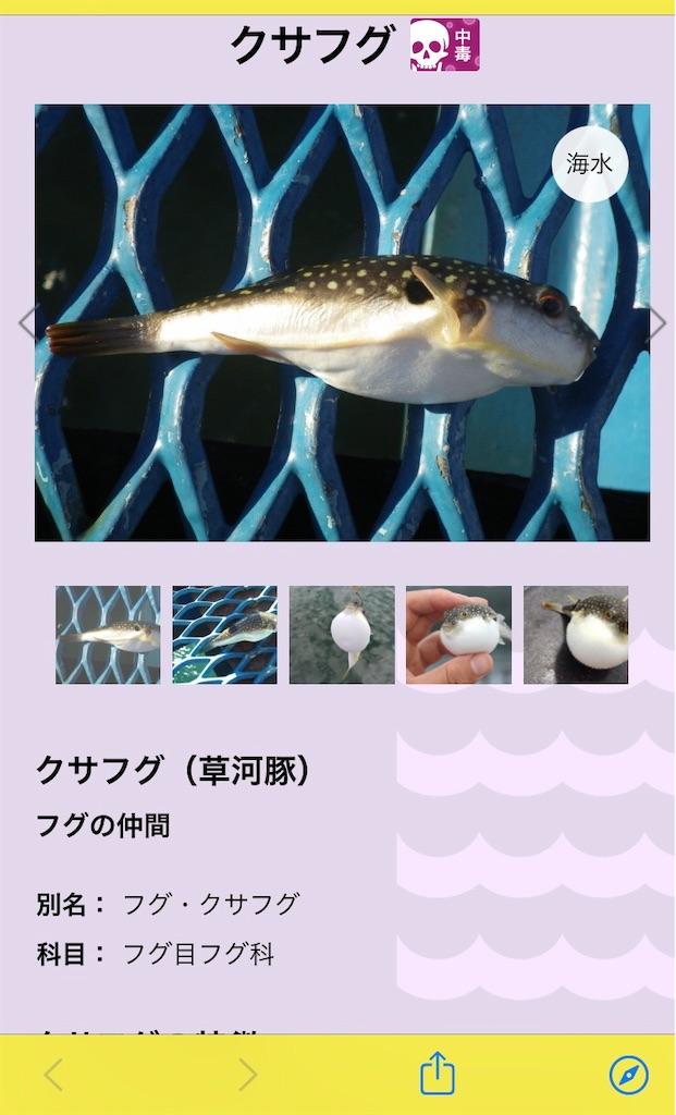 f:id:atamagaokashikunatta:20201112215338j:image