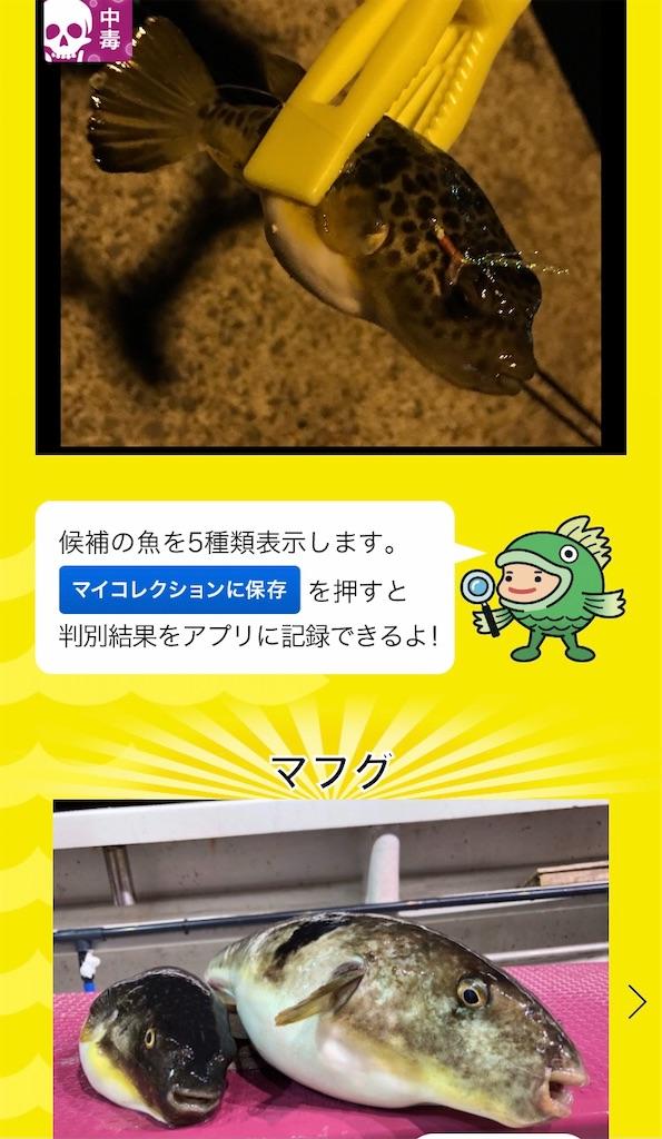 f:id:atamagaokashikunatta:20201113000608j:image