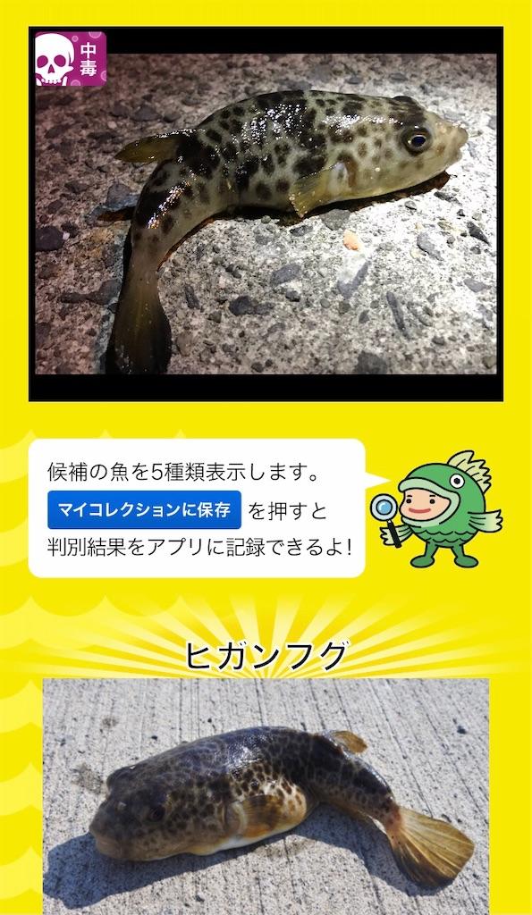 f:id:atamagaokashikunatta:20201113000840j:image