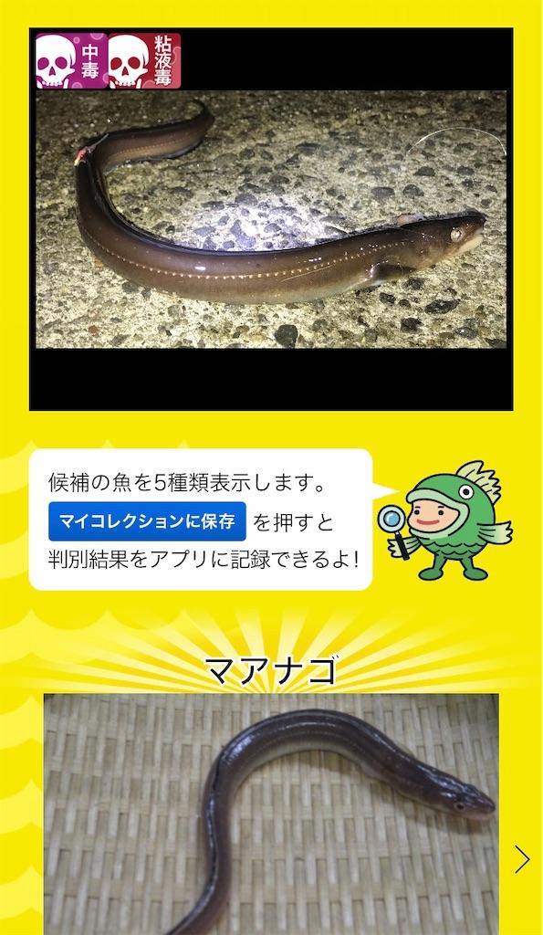 f:id:atamagaokashikunatta:20201113075424j:image
