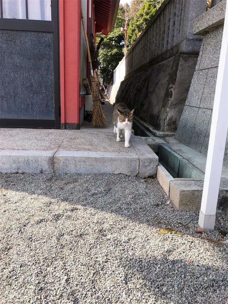 f:id:atamagaokashikunatta:20210104003140j:image