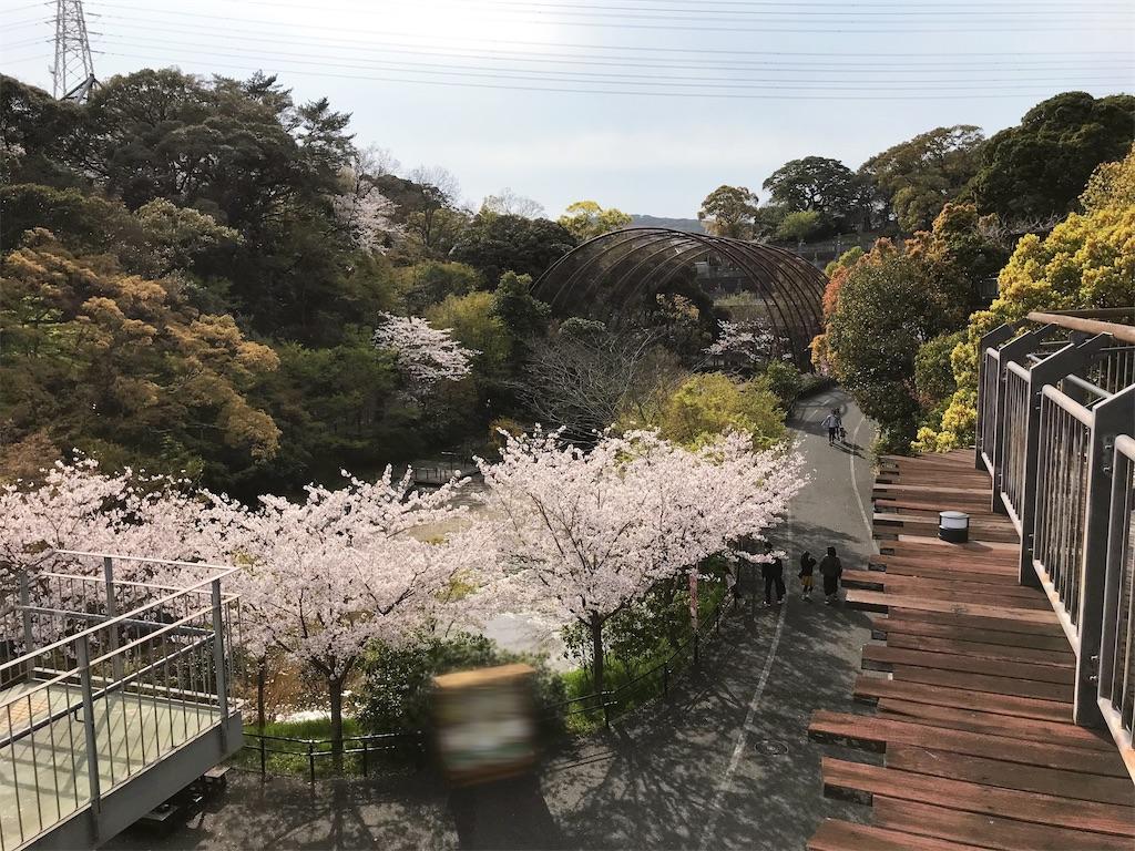 f:id:atamagaokashikunatta:20210328221035j:image