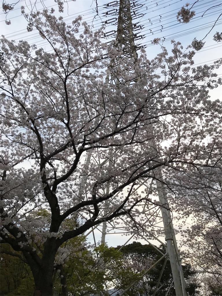 f:id:atamagaokashikunatta:20210328221655j:image