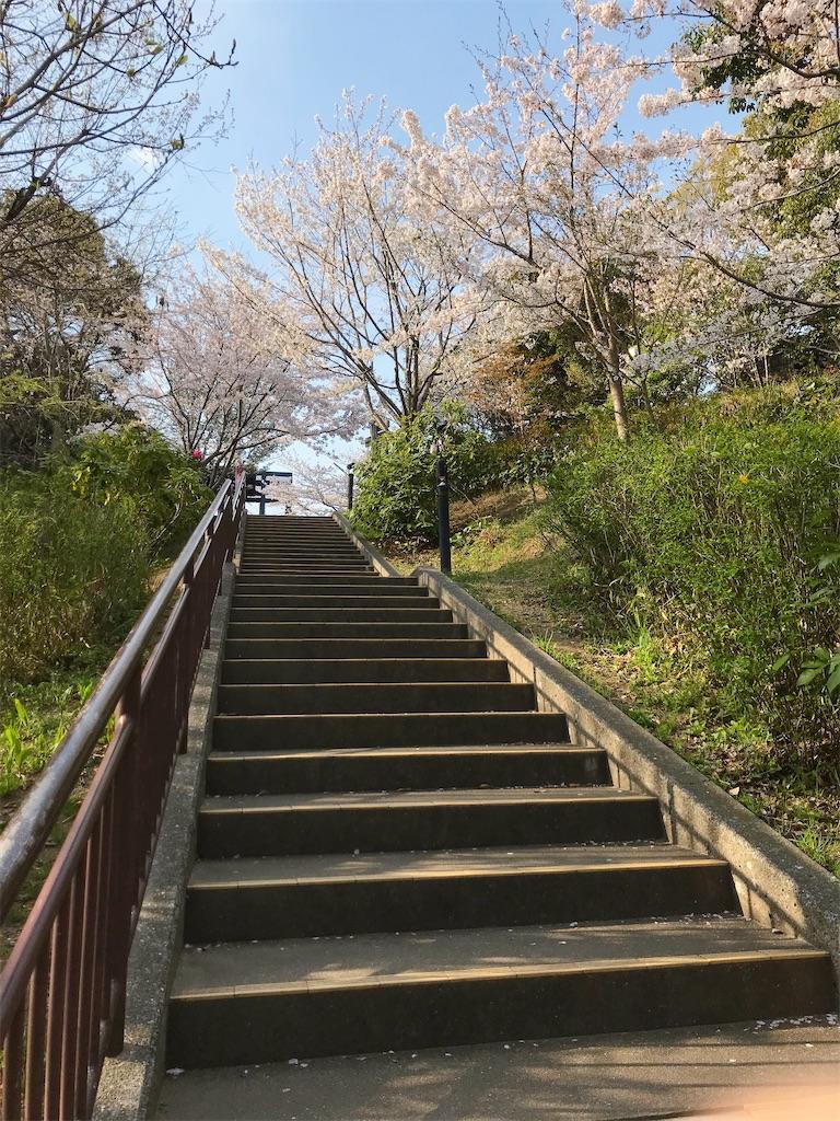 f:id:atamagaokashikunatta:20210328223852j:image
