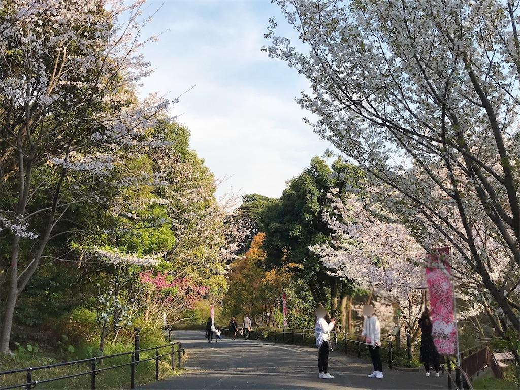 f:id:atamagaokashikunatta:20210328224503j:image