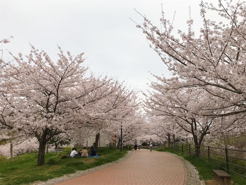 f:id:atamagaokashikunatta:20210328224648j:image