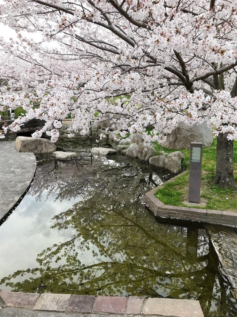 f:id:atamagaokashikunatta:20210328225015j:image