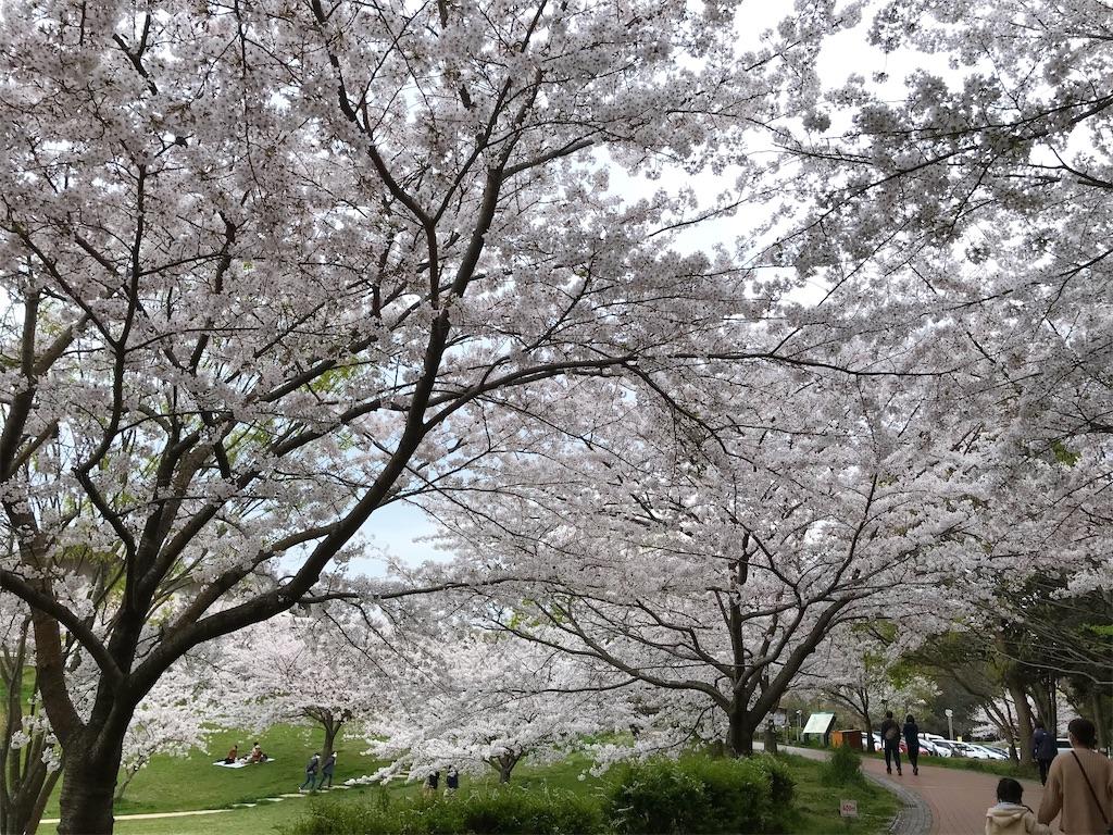 f:id:atamagaokashikunatta:20210328225153j:image