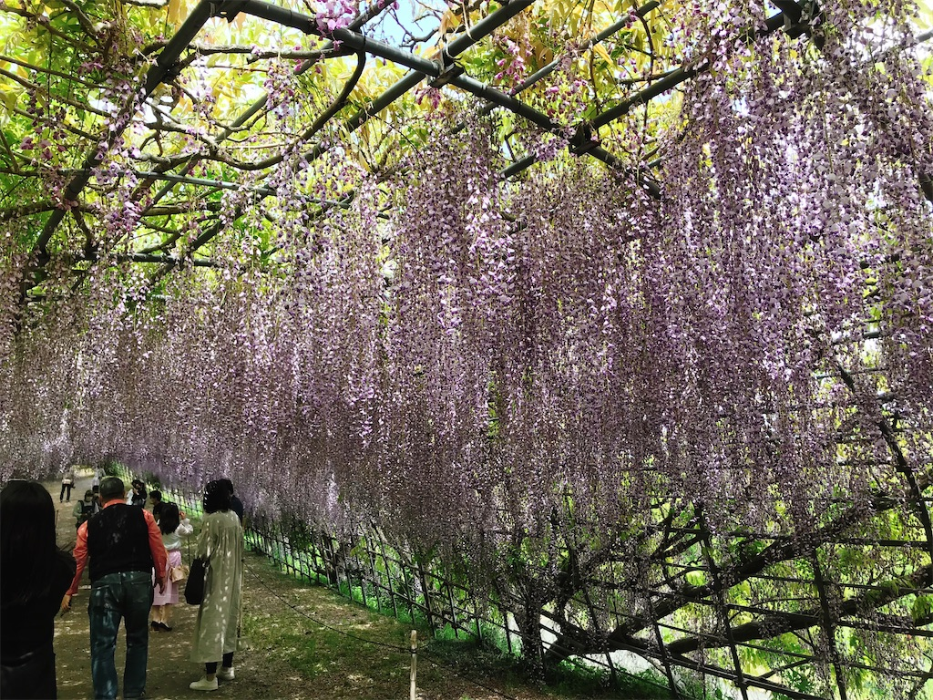 f:id:atamagaokashikunatta:20210502211844j:image