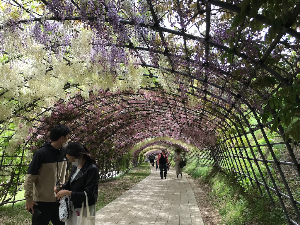 f:id:atamagaokashikunatta:20210502212249j:image