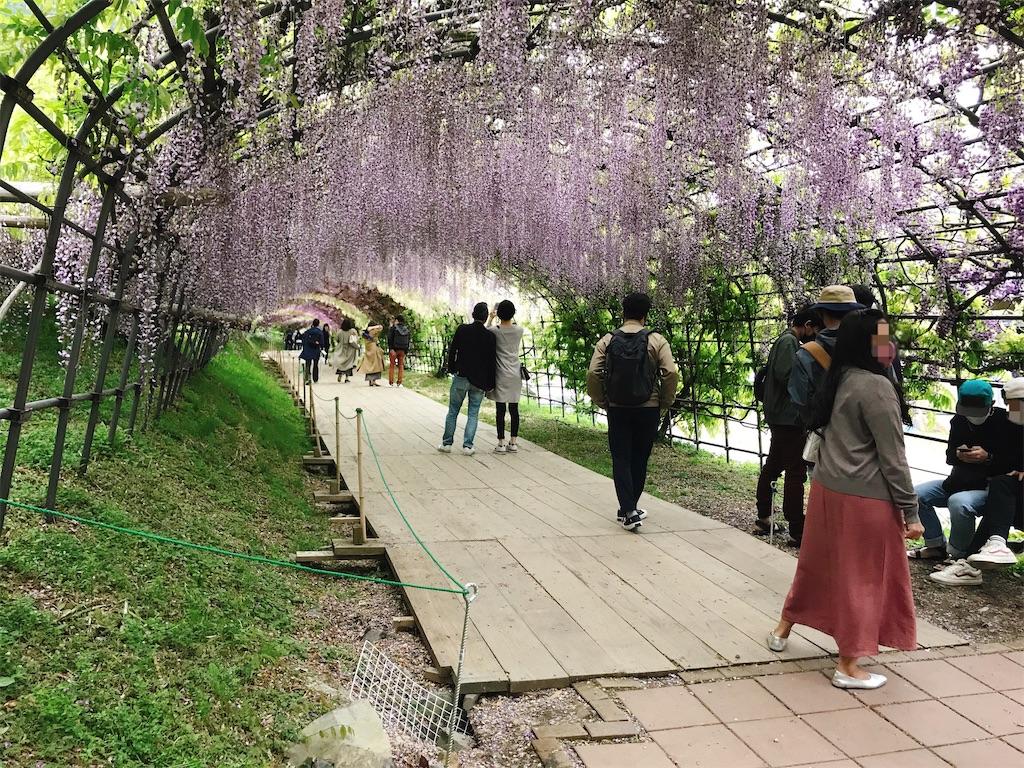 f:id:atamagaokashikunatta:20210502212258j:image